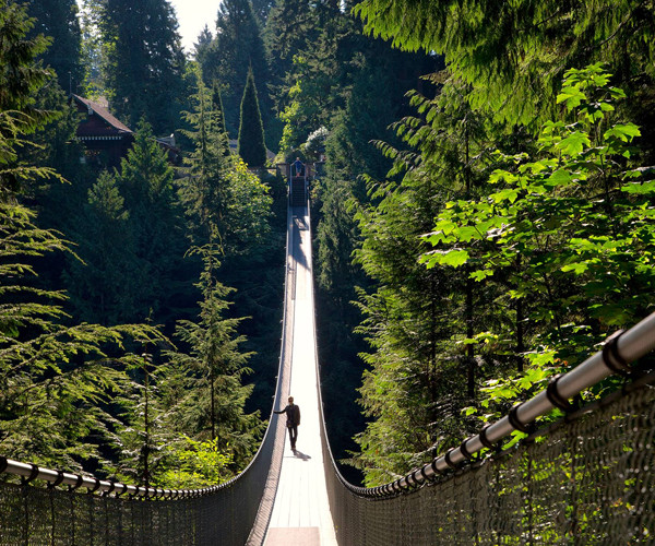 Perkopolis Capilano Suspension Bridge Park