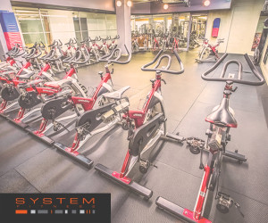 System Fitness